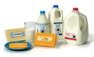 dairy wholesale route
